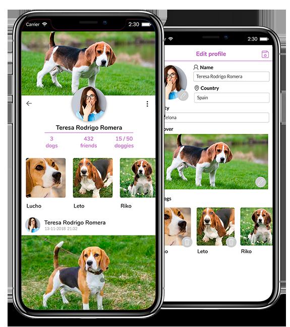 dogcha App profile image